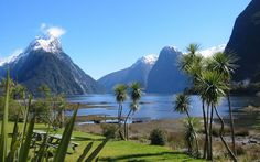 Cheap New Zealand Vacation Packages! Save Big On Travel To New Zealand With Our Discount Vacation Packages. Book Your Next Vacation To New Zealand & Save With Jetsetz Today! New Zealand Country, New Zealand South Island, New Zealand Tours, New Zealand Travel, Ecuador, Beautiful Islands, Beautiful Places, Amazing Places, Milford Sound