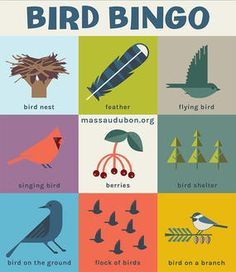Explore the Outdoors with Nature Bingo