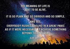 The Meaning of Life is just to be Alive. It is so plain and obvious and so simple. And yet, everybody rushes around in a great panic as if it were necessary to achieve something beyond themselves. ~ Alan Watts