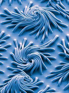 Nanobristle spirals