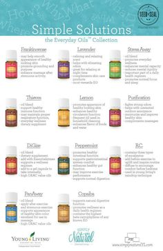 Everyday oil collection. Simple solutions to everyday problems! #3219352