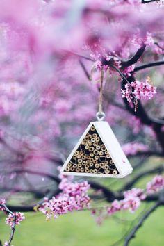 Comment aider les abeilles: Créer une abeille Maison Mason