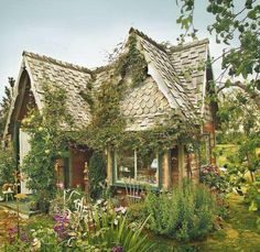 ah YES!!! THAT'll b the cottage of my fairy tale! it has flowers and some plants to feed as for two… it's totally enough! only miss davino and me… sitting on the porch… drinking hot chocolate and watching the panda playing in the garden ^_^