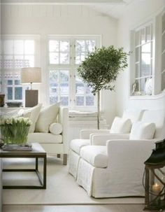 white living room; white slipcovers, sea grass rug and indoor plant. heaven.