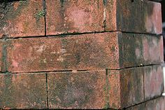 How to Clean Bricks. Cleaning your bricks can keep them in good condition and prevent corrosion from dirt, stains, or mold. For surface-level cleaning or routine maintenance, a mixture of dish soap and salt can keep your bricks clean.