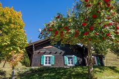Derborence   Switzerland