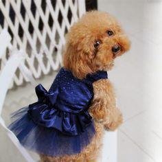 A maioria das pessoas amam e tem um animal de estimação e um dos preferidos são os cachorros que são adoráveis e doceis, chegam a fazer parte da família. E com isso os mercados de acessórios pets vem crescendo grandiosamente e um dos acessórios mais procurados são as roupas para cachorro que são super lindas …