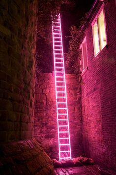 'Eschelle', neon ladder by Ron Haselden, Lumiere Durham Photo by Matthew Andrews. The neon and the background Neon Licht, Instalation Art, Neon Aesthetic, Alien Aesthetic, Neon Lighting, Late Nights, Wall Collage, Les Oeuvres, Statues