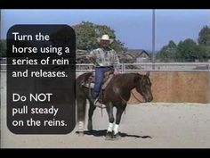 Exercises for Training Your Horse to Spin by Larry Trocha