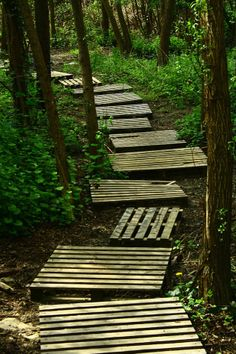 Sturdy pallets up cycled into a garden path. Good for a muddy area.