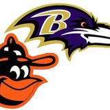 baltimore orioles ravens - Google Search