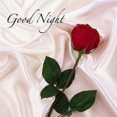Discover and share Romantic Good Night Quotes. Explore our collection of motivational and famous quotes by authors you know and love. Good Night Quotes, New Good Night Images, Good Night Love Messages, Romantic Good Night Image, Beautiful Good Night Images, Good Night Greetings, Night Wishes, Evening Greetings, Good Night Sister