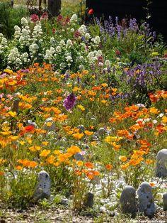 Beautiful Beach Gardens | Beautiful beach house garden. | My photography | Pinterest