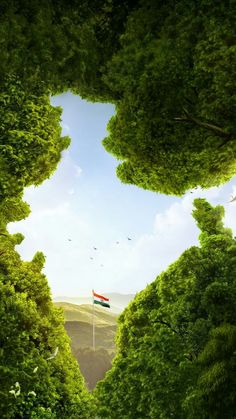 Luxury Indian Nature Wallpaper for Mobile - Indian Nature Wallpaper for Mobile Unique Wallpaper India Flag Of India Trees Cgi Hd Creative Graphics 9204 Happy Independence Day Images, 15 August Independence Day, Independence Day Wallpaper, Indian Independence Day, Independence Day Drawing, Independence Day Poster, Indian Flag Wallpaper, Indian Army Wallpapers, Nature Wallpaper