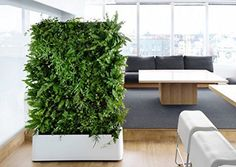 INDOOR 12 Pocket Vertical Living Green Wall Planter