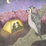 """""""Imagination...It's Up To You!"""" colored pencil children's book illustration. (You can stay up all night, at least 'til dark) © Cindy Coleman"""