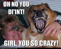 So funny......
