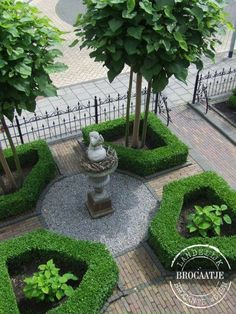 47 Awesome Small Front Yard Landscaping Design Ideas On A Bu.- 47 Awesome Small Front Yard Landscaping Design Ideas On A Budget 47 Awesome Small Front Yard Landscaping Design Ideas On A Budget Small Front Yard Landscaping, Landscaping Trees, Formal Gardens, Outdoor Gardens, Formal Garden Design, Small Front Gardens, Boxwood Garden, Evergreen Garden, Garden Care