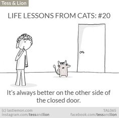 Tess and Lion: LIFE LESSONS FROM CATS: #20 - It's always better on the other side of the closed door.