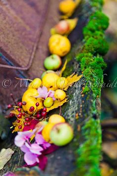 love the color...green apples, purple mums, yellow pears on a table or bale of hay?