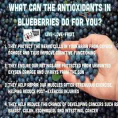 What can the antioxidants in blueberries do for you?