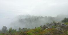 Skrivebordsbakgrunn: Utsikt mot tåkelandskap / View of foggy landscape