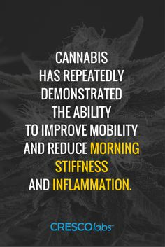Cannabis has repeatedly demonstrated the ability to improve mobility and reduce morning stiffness and inflammation. (Medical cannabis, marijuana)