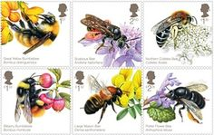 Royal Mail set of stamps celebrating UK bees