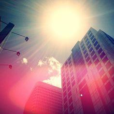 Love Sydney city summers! Instagram: @wearehandsome