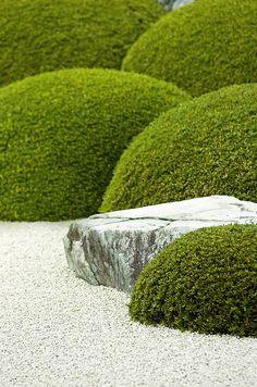 Japanese Zen Garden 禅の庭 - Gardening Lene