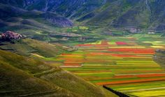 Castelluccio Italy above the Piano Grande Umbria, Italy. Famous for lentil crops (w red flowers), horses, hang-gliding, tourism. Wonderful Places, Beautiful Places, Visit Florence, In The Beginning God, Natural Background, Field Of Dreams, Places Of Interest, Holiday Destinations, World Heritage Sites