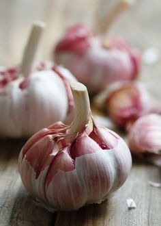 Could garlic be bad for you? A doctor claims garlic is extremely toxic because it contains a poison for your brain cells. Discover if garlic is your friend or foe. Fruit And Veg, Fruits And Vegetables, Food Photography Styling, Food Styling, Vegetables Photography, Beautiful Fruits, Superfood, Food Art, Food And Drink