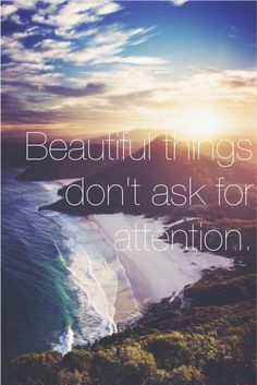 Beautiful things don't ask for attention.                                                                                                                                                      More