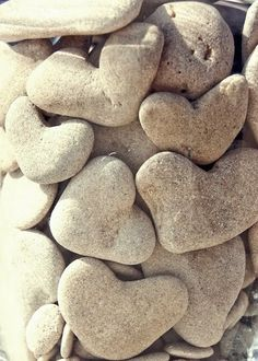 I <3 nature hearts.  New something fun to find with the kids and put in the garden.