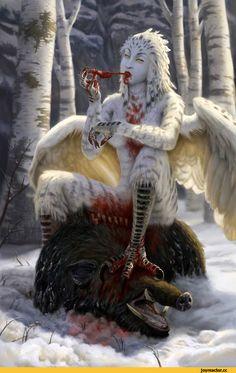 art,арт,Snow Harpy,гарпия,Fantasy,Fantasy art