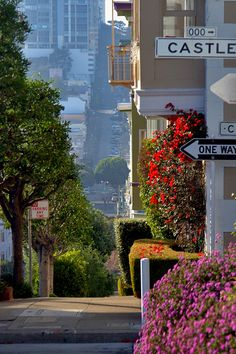 San Francisco life is full of ups and downs. . . .