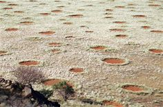 Dragons, aliens, bugs? Scientists may have solved the mystery of the desert's 'fairy circles' - The Washington Post