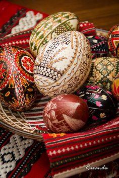 painted eggs | Romanian Painted Eggs Photograph Ukrainian Easter Eggs, Ukrainian Art, Contemporary Decorative Art, Egg Shell Art, Visit Romania, Egg Crafts, Cross Stitch Baby, Egg Art, Naive Art
