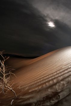 Death Valley National Park  I want to slide down the white sand dunes in the moonlight