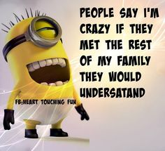 Crazy Family 。◕‿◕。 See my Despicable Me Minions pins https://www.pinterest.com/search/my_pins/?q=minions