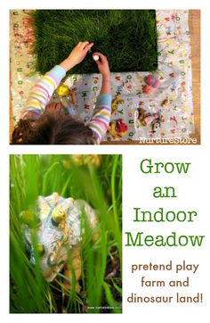 grow an indoor meadow for pretend play farm and dinosaur land + earth day activities for kids Earth Day Activities, Spring Activities, Infant Activities, Learning Activities, Nature Activities, Activities For Kids, Hands On Learning, Learning Through Play, Toddler Fun