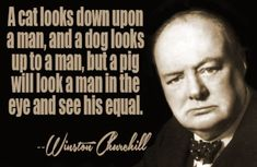 Here is Winston Churchill Quote Pictures for you. Winston Churchill Quote 118 most famous winston churchill quotes that teach. Quotes By Famous People, People Quotes, Famous Quotes, Best Quotes, Funny Quotes, Qoutes, Quotable Quotes, Legend Quotes, Wisdom Quotes