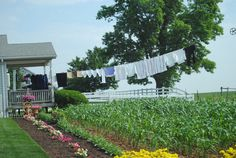 Amish farm and clothes line. ( We have one, but theirs is better :o) Amish Farm, Amish Country, Country Charm, Country Life, Country Girls, Country Living, Country Roads, Country Kitchen, What A Nice Day