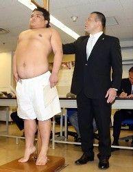 """大相撲:背伸び上等!1メートル60「爆羅騎」""""盛って""""合格- 毎日jp(毎日新聞)"""