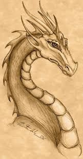 25 Ideas Tattoo Dragon Fire Mythical Creatures For 2019 - Art World Art Drawings Sketches, Animal Drawings, Cool Drawings, Cool Dragon Drawings, Detailed Drawings, Fantasy Dragon, Fantasy Art, Dragon Sketch, Dragon Head Drawing