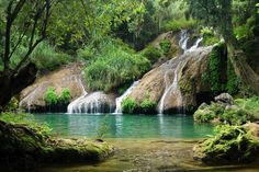 El Nicho waterfall near Cienfuegos, Cuba. I swam in this natural tropical pool! It was teaming with tiny fish. Cienfuegos, Vinales, Trinidad, Places To See, Places To Travel, Cuba Beaches, Viva Cuba, Cuba Travel, Belleza Natural