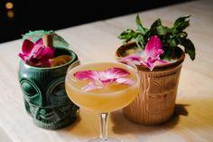 Rum 101 | Lettuce Entertain You