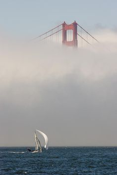 ✭ An International 14 skiff sails under the Golden Gate Bridge