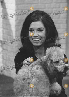 Mary Tyler Moore with Her Poodle Diswilliam 1975 supplied by Globe Photos, .imagecollect.com