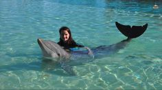 Annie with a dolphin
